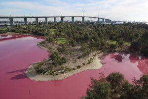 ある日突然、青からピンク色に染まる!豪にある湖が不思議