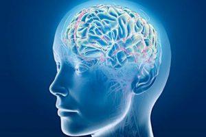 死んだ後も脳は活動していた?!心臓停止から10分以上も脳波が計測される