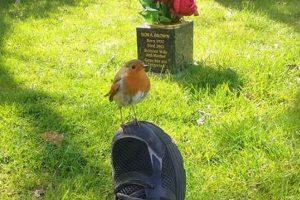 亡くなった子供の命日に、お墓で母親に起きた奇跡が感動的