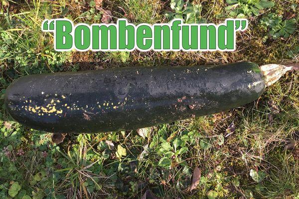 ドイツで発見された不発弾のような黒い物体、実は意外なものだったと判明