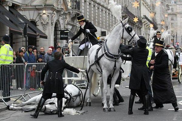 英のニューイヤーパレードで馬が突然転倒、世界中から安否を問う声が殺到
