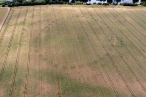 アイルランドで猛暑により乾燥した土地から、5000年前の遺跡が姿を現す