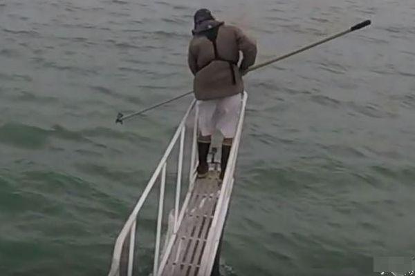 ホオジロザメが船の人間をめがけて海面からジャンプ、珍しい映像が撮影される