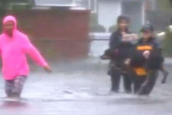 リポーターが大型ハリケーンの取材を中断、取り残されたペットの救助を手伝う