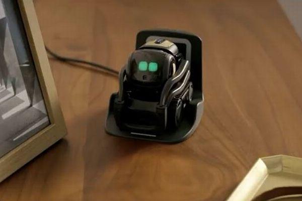 目で感情を表し、会話も楽しめる!米で販売されている小型ロボットがかわいい