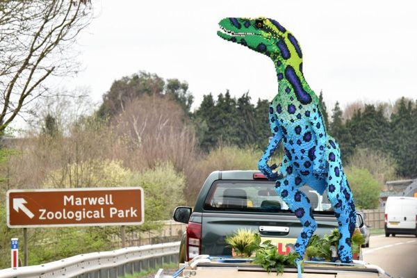 突然、道路にカラフルな恐竜の像が出現、皆が足を止め注目を集める