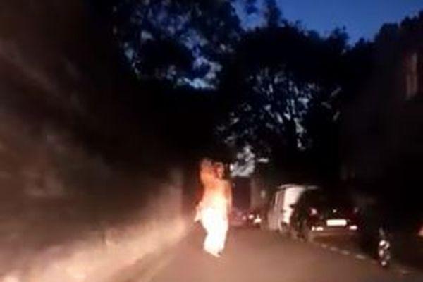 追跡していた警官も思わず大爆笑!夜中に恐竜の姿で逃げ回る男が出現