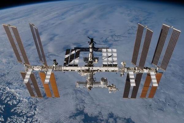 国際宇宙ステーション内で牛肉を生産、筋肉組織から育てることに成功