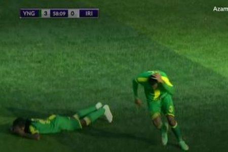 サッカーの試合中、グランドにハチの群れが出現、選手らが地面に伏せる