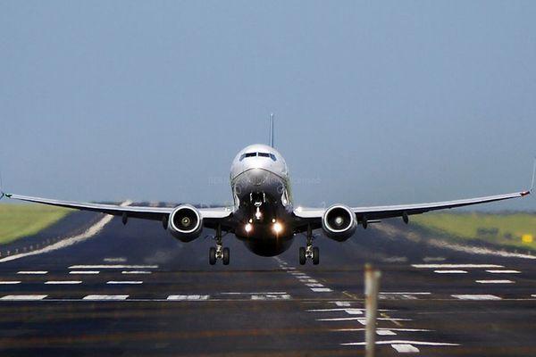 ユナイテッド航空に乗っていた女性が、フライト中にサソリに刺される