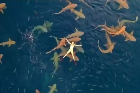 サメの群がる海に女性が浮かぶ!モルジブで撮影された動画が話題に
