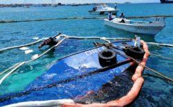 ガラパゴス諸島で艀が沈没、燃料漏れによる環境への影響が懸念される