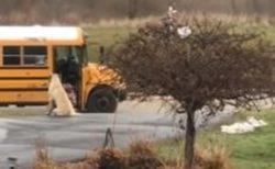 毎朝、2人の娘がスクールバスに安全に乗るのを見届けるワンコが賢い