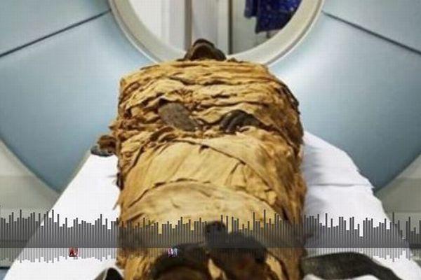 古代エジプトのミイラの声を初めて再現、CTスキャンで人工の喉頭を作り成功