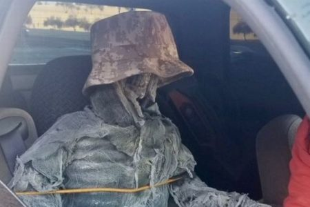 車の助手席に骸骨の人形を乗せていた運転手、警察に止められ罰金、その理由とは?