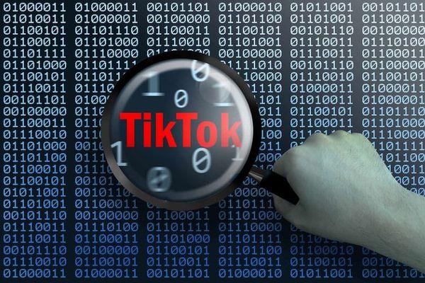 「TikTok」に安全上のリスク、米陸軍が政府支給の電話での使用を禁止