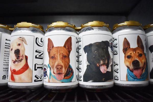 缶ビールに貼られた犬の写真を見て、飼い主が3年ぶりに行方不明の愛犬を発見、再会へ