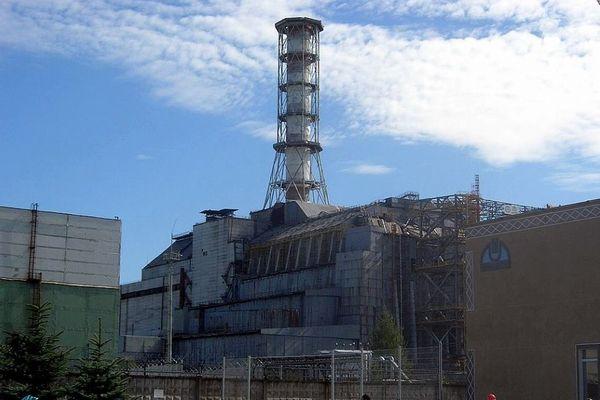 放射能を喰らう菌類、チェルノブイリ原子炉内で増殖し、NASAが実験に使用