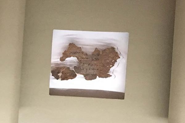 米国聖書博物館にある死海文書の断片、全てが偽物と判明