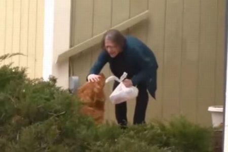 新型コロナで自宅待機をしている高齢者に、食べ物を届けるワンコが賢い!