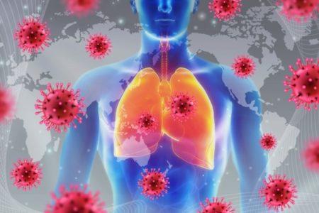 コロナウイルスの免疫力は6カ月後に急速に低下する可能性、集団免疫獲得は難しい?