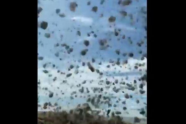 アメリカで発生したつむじ風、大量の回転草が巻き上げられる動画がクレイジー!