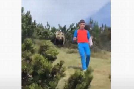 少年の背後からクマが接近、イタリアで撮影された動画にドキドキ
