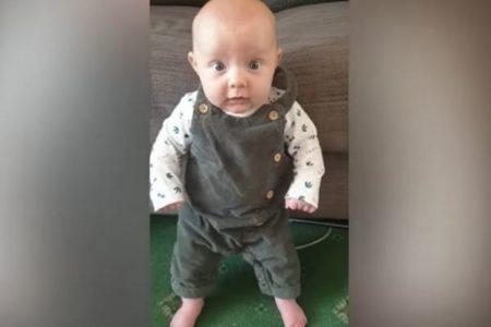 最年少記録か?生後8週間で助けを借りずに立つ赤ちゃんがすごい