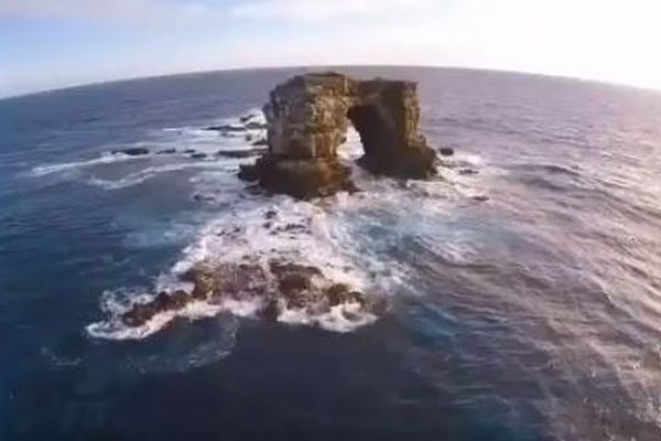 ガラパゴス諸島周辺に260隻の中国漁船、船も大型化し生態系への懸念が強まる