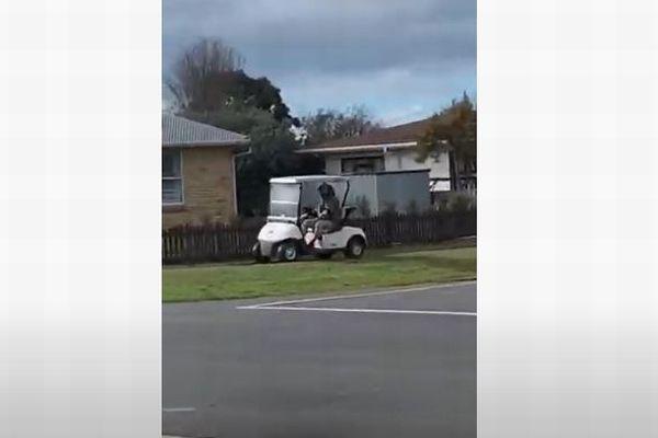 超スロ~なカーチェイス、NZでパトカーがゴルフカートを追跡