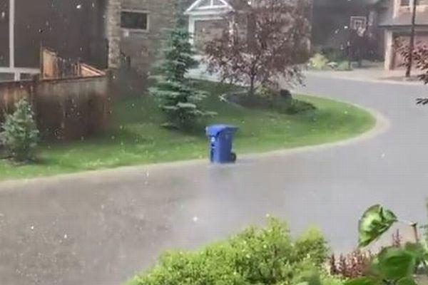 ゴミ箱が逃げていく?!嵐の最中、勝手に移動していく動画が面白い