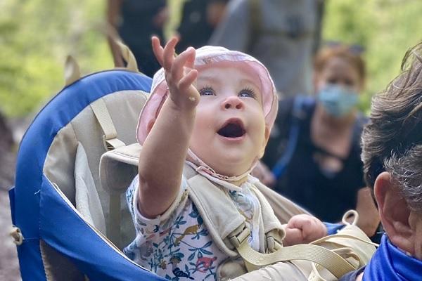 【動画】見るとセロトニンが増えるかも?初めて見た滝に大興奮する赤ちゃんがかわいい
