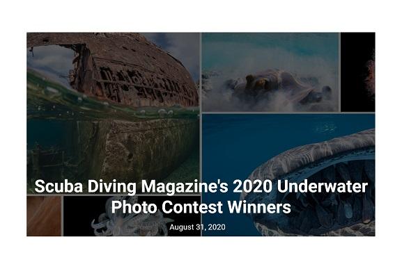 応募者は全世界のダイバー!ダイビング誌によるフォトコンテストの受賞作が幻想的