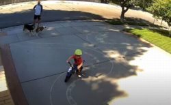 よその子供のため男性が自宅に自転車用コースを描いた結果…心温まる動画が話題に
