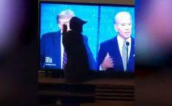 ニャンコは民主党支持?大統領選の討論会で猫がトランプ氏ばかりを引っ掻く