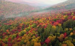 米の山あいで紅葉が見頃、染まった木々を捉えた美しいドローン映像
