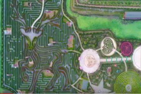 3つのギネス記録に認定された世界最大の迷路【中国】