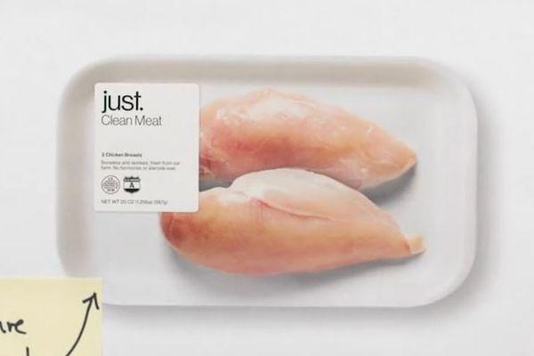 【世界初】シンガポール政府が、細胞で培養された鶏肉の商業販売を承認