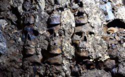 アステカ時代の「スカル・タワー」周辺で新たな頭蓋骨、119個を発見【メキシコ】