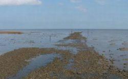 100人以上死んでいるという危険な海の小道がイギリスに