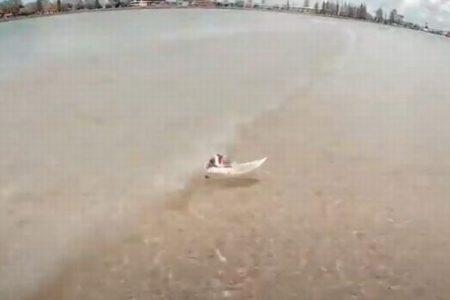 オーストラリアの海で、ネズミがサーフィンをしているのを目撃【動画】