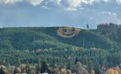 オレゴン州の森に出現したニコニコマークに、みんながニッコリ