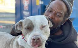 アニマルシェルターが火事!命がけで犬や猫たちを救ったのはホームレス男性だった