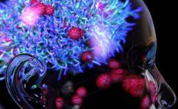【新型コロナ】マウスの実験で、肺より脳にウイルスが大量に残っている可能性:ジョージア州立大学