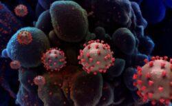 米国立アレルギー・感染症研究所が、新型コロナワクチンの変異株に対する効果を発表