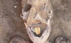 エジプトで「黄金の舌」を持つミイラを発見、デスマスクや巻物も見つかる