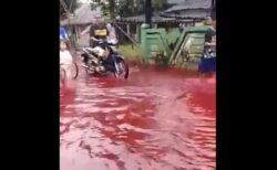 インドネシアの村で洪水、工場から染料が流れ赤い水で覆われる