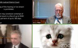 「私はネコではありません!」リモート裁判に出席した弁護士、顔にフィルターがかかり弁解