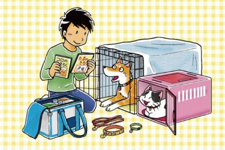ペットを守ろう!災害発生時に飼い主が知っておきたい防災や同行避難について
