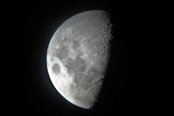 【現代の方舟】地球上の生物670万種のサンプルを月に保管する計画を科学者が提唱